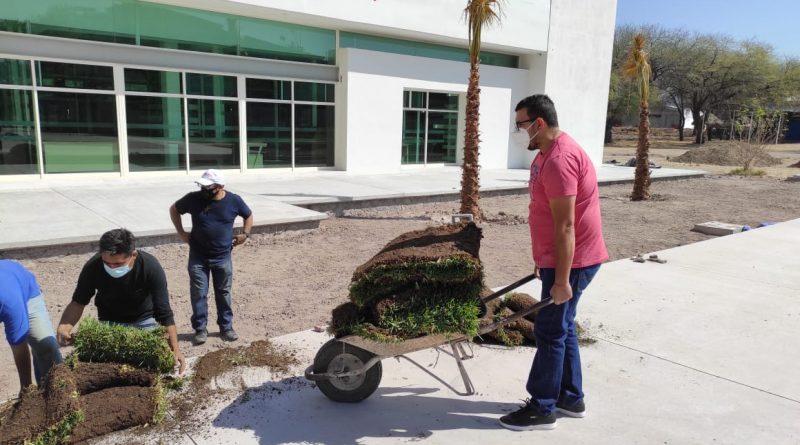 Reforestan Nuevas áreas en la UPSZ de Juchipila